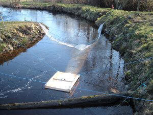 Smolt Trap on River Doon