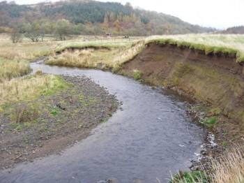 Eroding bank (good source of spawning gravel!)