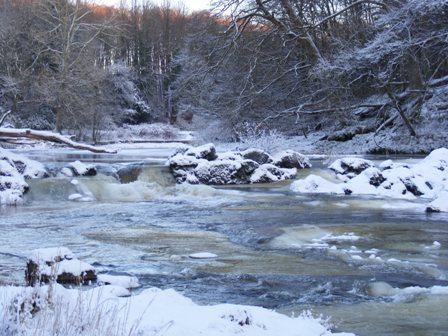 Encased in ice, River Ayr Jan 2010