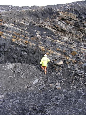 There's coal there somewhere