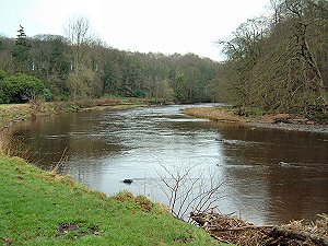 River Ayr at Auchincruive