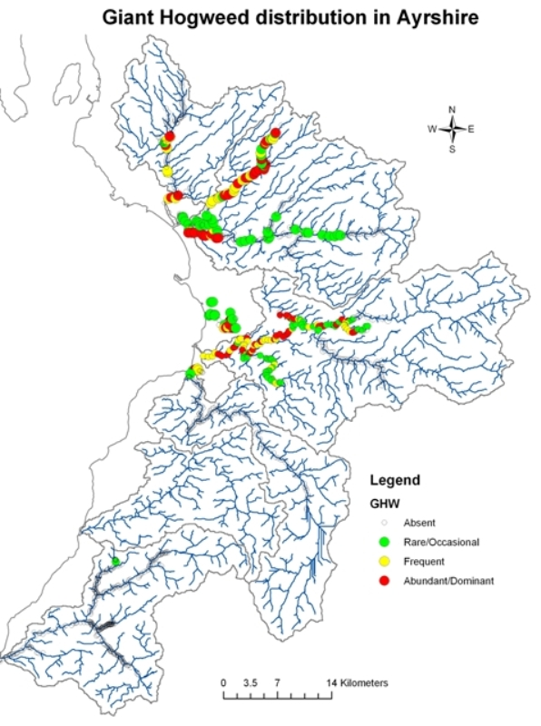 Distribution Of Giant Hogweed Japanese Knotweed And Himalayan Balsam In Ayrshire