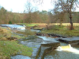 Weirs at Catrine