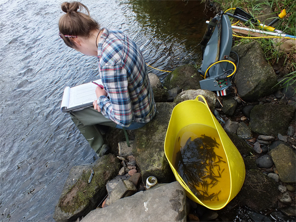 Helen recording the results from the Dailly site which produced great results