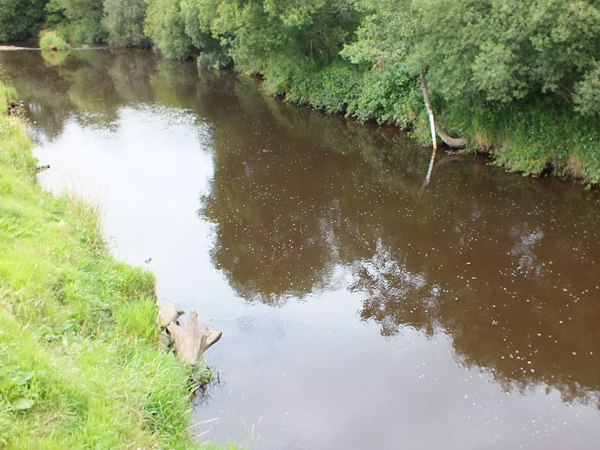 The Girvan at Brunston Castle Golf course. The source of the dirty water must be upstream of Dailly but where exactly?