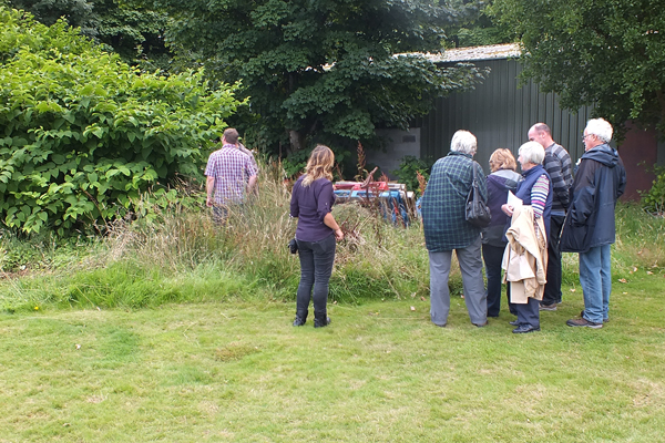 Volunteers and staff discussing a stand of Japanese Knotweed at Brodick Golf Club