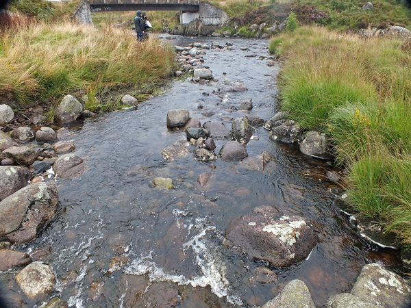 Our electrofishing site at the Carrick Lane.
