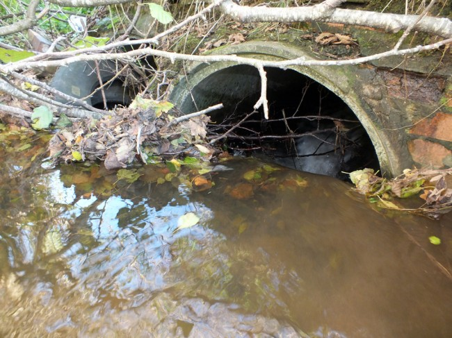The upper end of the road culverts were blocked and virtually impassible.