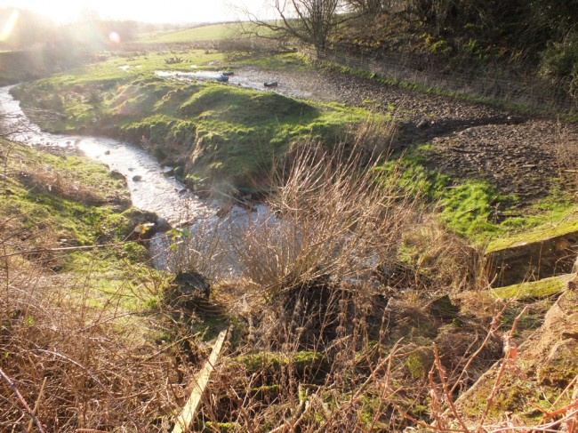 Unfenced margins and inappropriate feeding location leading to diffuse pollution on the Yonderton Burn.
