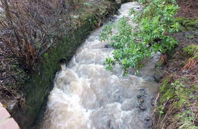 Balligmorrie Burn was adding to the silt load.