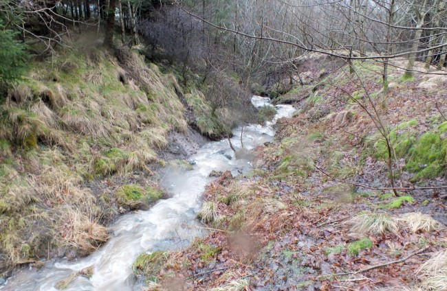 High up the Minuntion Burn and the sediment loading was considerably reduced but it was still there. High energy burn such as this are always going to pick up silt