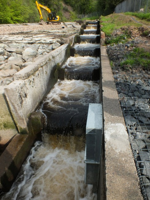 The fish pass operating at around the designed flow rate f 0.5 cubic meters per second. Why it was never correctly constructed to work at this flow or modified during the  last 25 + years since it was opened is beyond me.