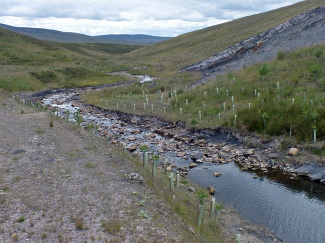 looking downstream from near the top of the new channel