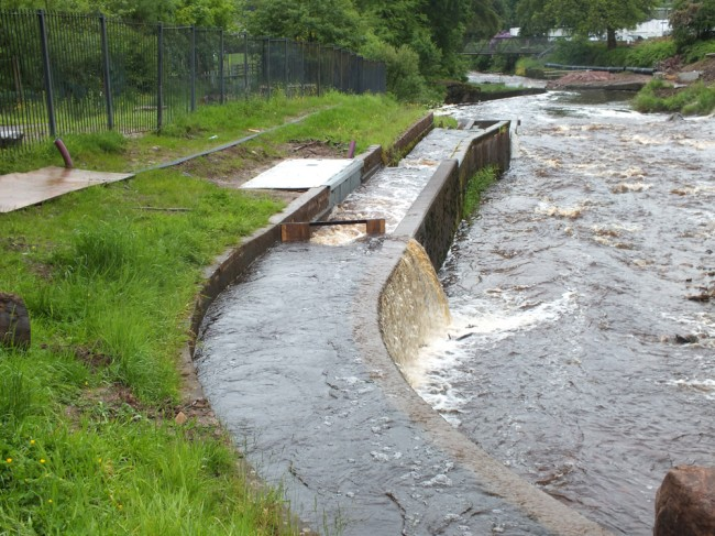 Adequate flow in the fish pass to allow free passage for salmon running the river.