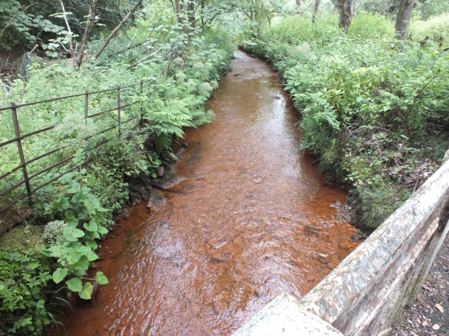 Stottencleugh Burn...not looking good but it hasn't for many years. I do remember this burn in the late 80's and it was clear in those days and an important spawning burn. We monitored egg survival here recently and none survived.