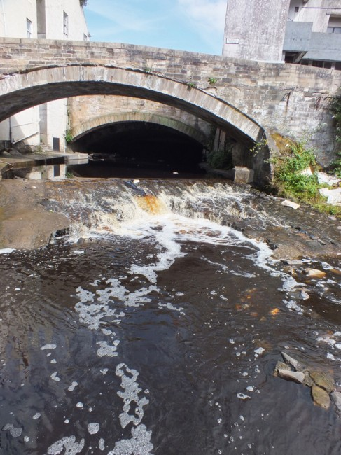 Fish passage has been much improved by the collapse of the weir however there needs to be a technical solution implemented here before the weir collapses further and possibly leads to a major pollution incident. There are no quick fixes here but fish passage must be maintained.
