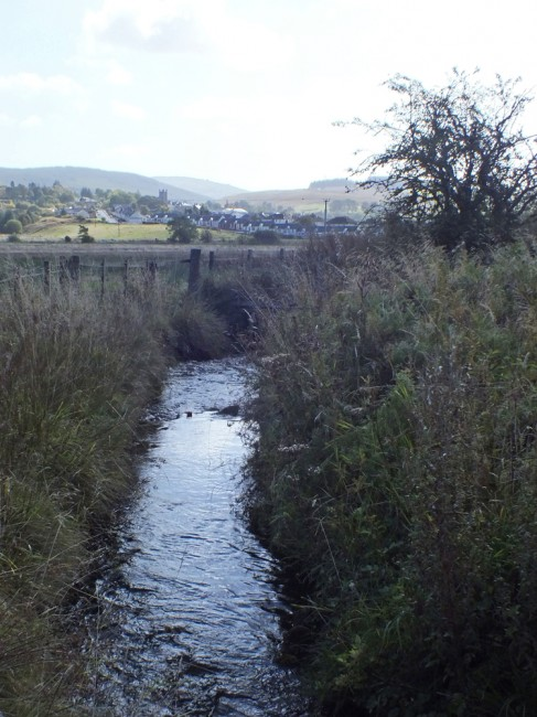 The electrofishing site at Burnton Burn with Dalmellington in the distance.