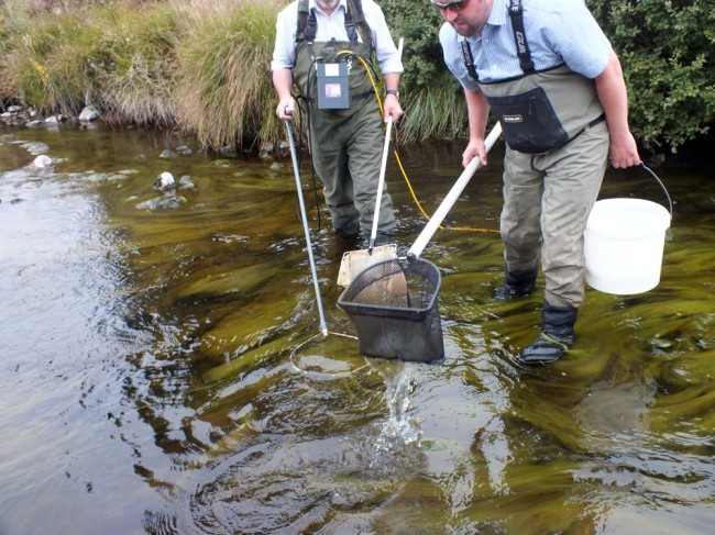 Algae and low conductivity made catching fish difficult.    Although the algae covered the bed, the substrates below were clean and should be revealed after the next spate.