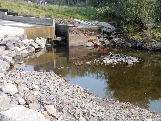 The sediment deposits below the fish pass and weir have now been removed