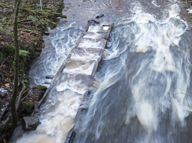 The upper fish pass was full of gravel and branches and would have been very difficult for salmon to pass through