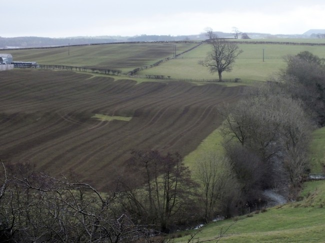Slurry spread near the Burnock Water.