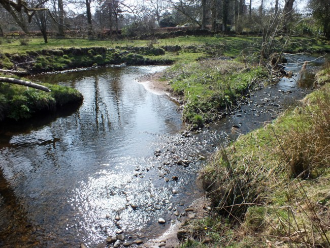 A braided channel which is left unaddressed will lead to more tree cover being lost and tonnes of silt being mobilised.