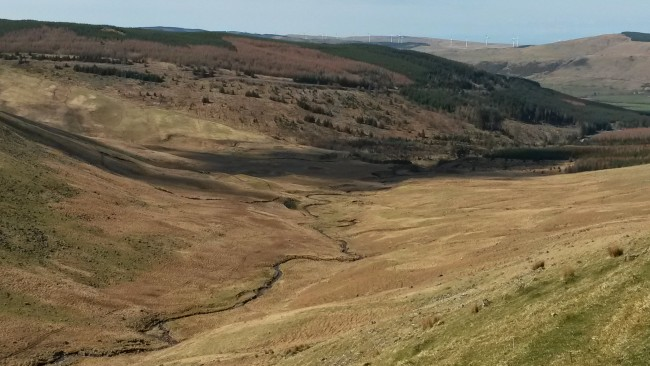 The view down the Corn Roy Burn towards the Balloch Burn  and the upper River Stinchar
