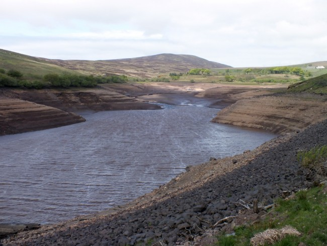 The reservoir today. Levels are around 5 - 6' below those when we last removed fish.