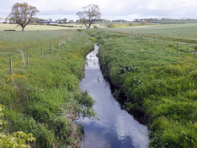 Upstream of Whirr Bridge on the catrine Ochiltree road. Lush vegetation taking up nutrients before they reach the burn. Adequate buffers are created by the fencing and the bankside erosion and cover for fish and other species is improved.