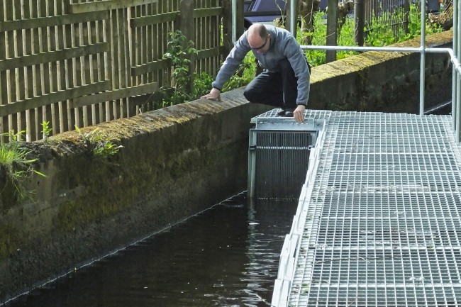 Muir inspecting a gap between the wall and the smelt screens. Smolts will end up in the votes unless these gaps are sealed, but otherwise the screens should do their job