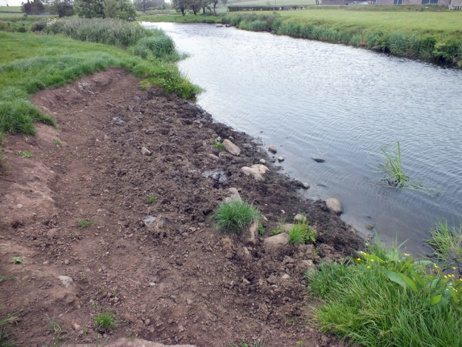 This erosion will soon revegetate and stabilise. Silt will be reduced downstream