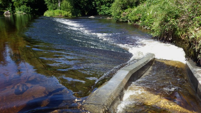A strong attraction flow produced by the fish pass.