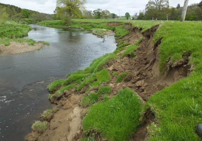 Looking upstream at the same erosion and it's clear there's still much to do