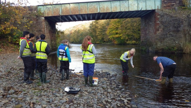 Wellington School pupils at Gadgirth on the River Ayr collecting kick samples.