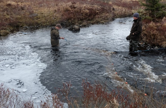 Struan and Muir checking the smolt trap on the Garple for fish.