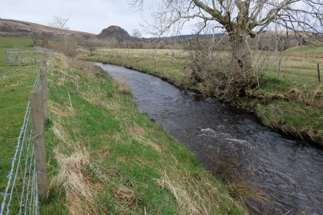 Good buffers provided by the fencing however, these banks may benefit from a few more trees and ART will address this shortly