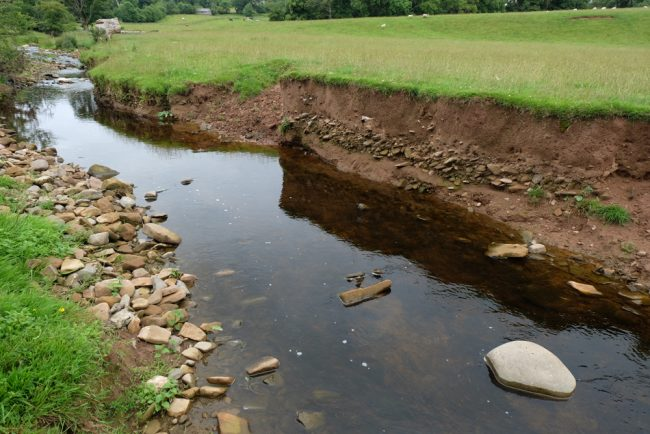 Severe erosion as a result of unrestricted livestock access.