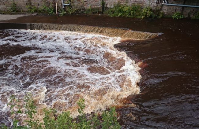 The weir during a spate today.