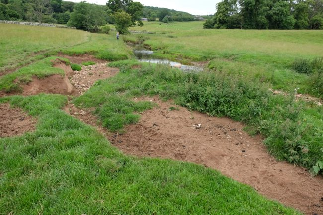 Fencing can solve many issues such as this bankside instability