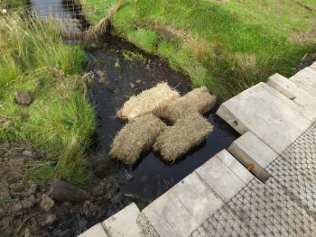 Bales are an effective means of catching suspended sediment