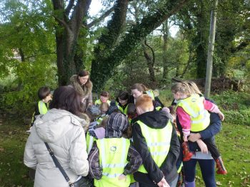 Pupils from Minishant Primary identifying fish from the Culroy Burn