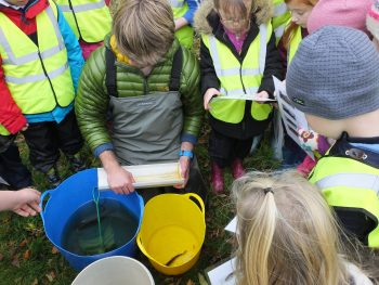 Identifying fish from the Dyrock Burn with Kirkmichael Primary School